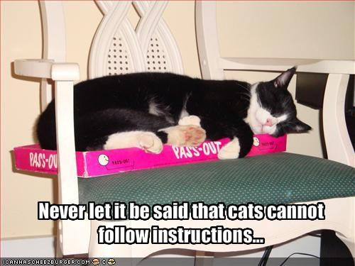Never let it be said that cats cannot follow instructions...