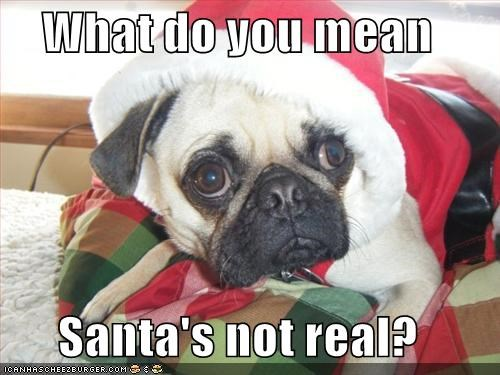 What do you mean  Santa's not real?
