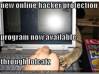 new online hacker protection  program now available  through lolcatz