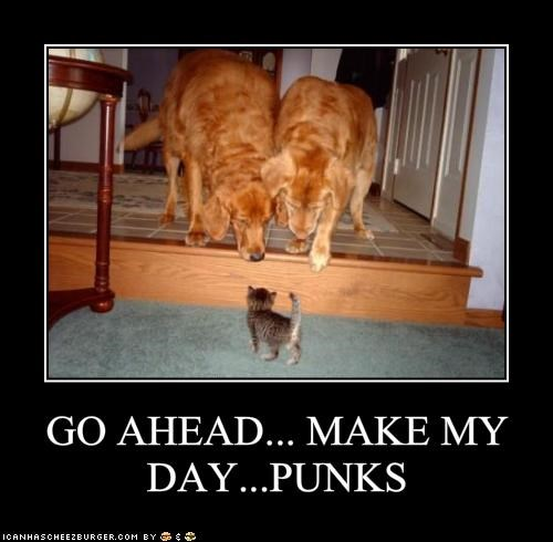 GO AHEAD... MAKE MY DAY...PUNKS