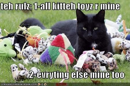 teh rulz: 1-all kitteh toyz r mine  2-evryting else mine too