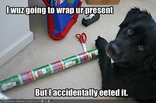 bad dog,christmas,hungry,labrador,nom nom nom,present