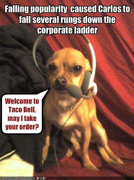 Falling popularity  caused Carlos to fall several rungs down the corporate ladder
