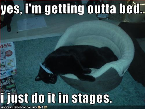 yes, i'm getting outta bed.  i just do it in stages.