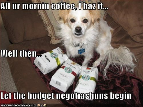 All ur mornin coffee, I haz it... Well then... Let the budget negotiashuns begin