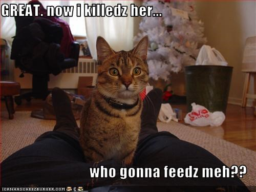 GREAT. now i killedz her...   who gonna feedz meh??