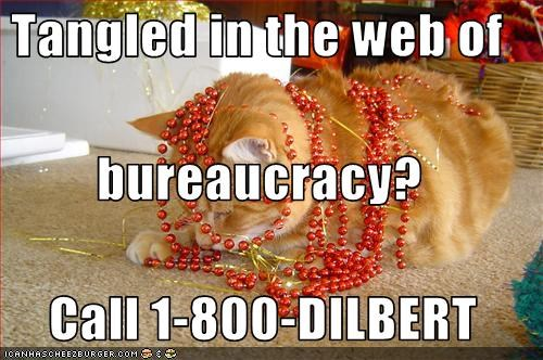 Tangled in the web of  bureaucracy?  Call 1-800-DILBERT