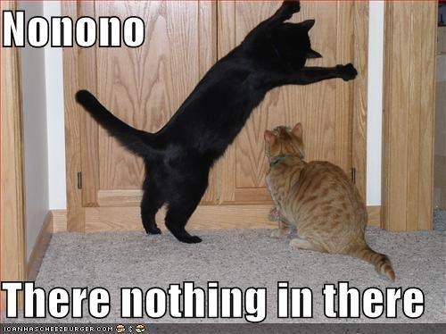 Nonono  There nothing in there