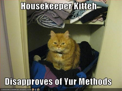 Housekeeper Kitteh  Disapproves of Yur Methods