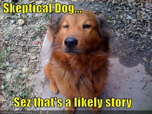 Skeptical Dog...  Sez that's a likely story