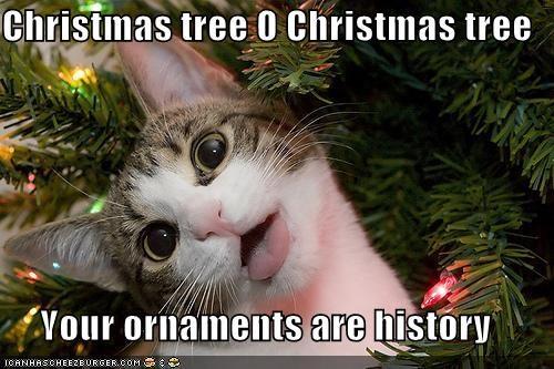Chrtistmas tree...