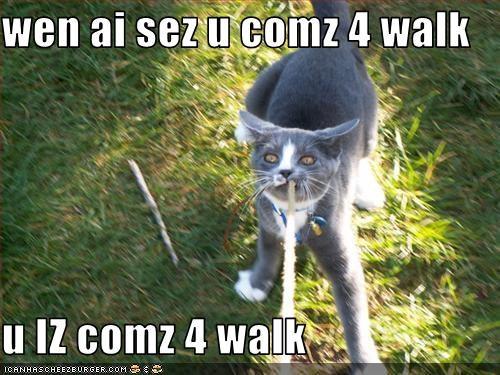 wen ai sez u comz 4 walk  u IZ comz 4 walk
