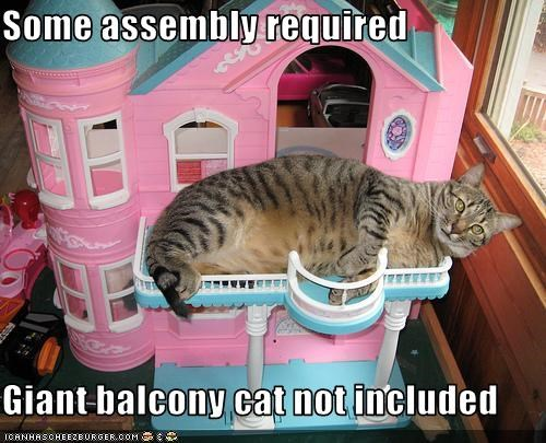 Some assembly required  Giant balcony cat not included