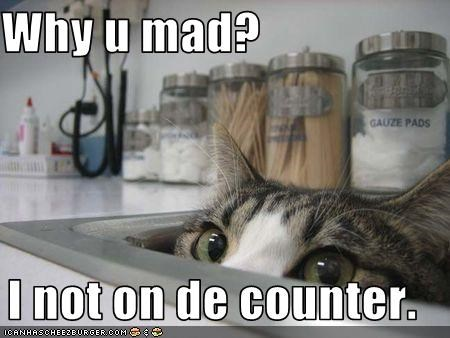 Why u mad?  I not on de counter.