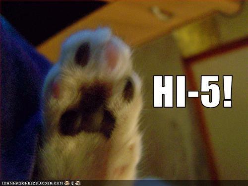 HI-5!