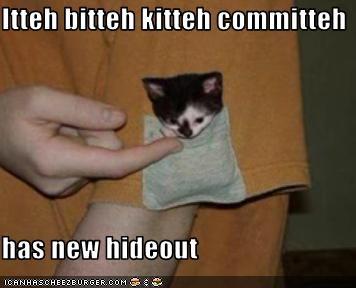 Itteh bitteh kitteh committeh  has new hideout