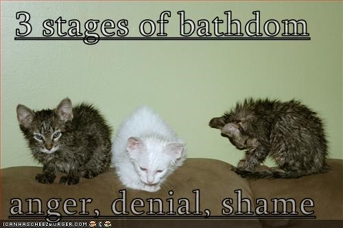 3 stages of bathdom  anger, denial, shame