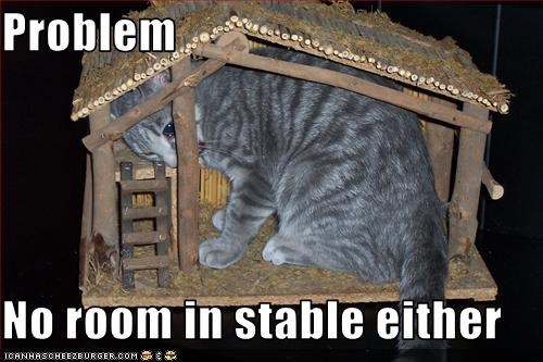 Problem  No room in stable either