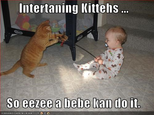 Intertaning Kittehs ...  So eezee a bebe kan do it.