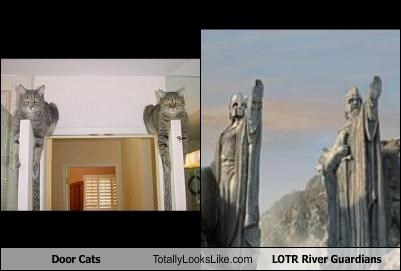Door Cats Totally Looks Like LOTR River Guardians
