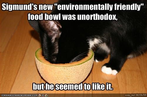 "Sigmund's new ""environmentally friendly"" food bowl was unorthodox, 