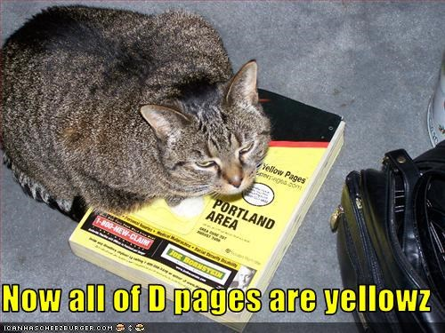 Now all of D pages are yellowz
