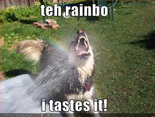teh rainbo  i tastes it!