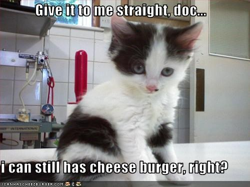 Give it to me straight, doc...  i can still has cheese burger, right?
