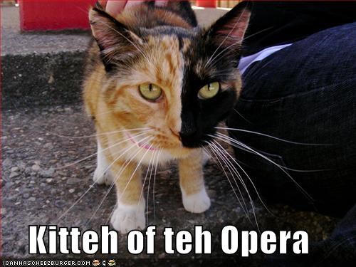 Kitteh of teh Opera