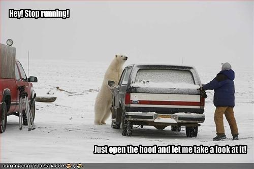 Hey! Stop running!