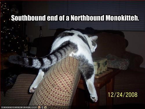 Southbound end of a Northbound Monokitteh.
