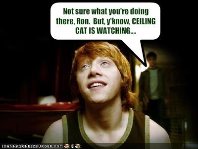 Not sure what you're doing there, Ron.  But, y'know, CEILING CAT IS WATCHING....