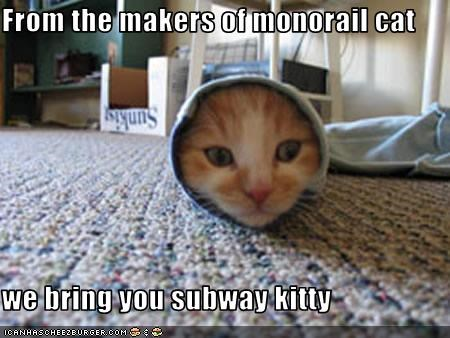 From the makers of monorail cat  we bring you subway kitty