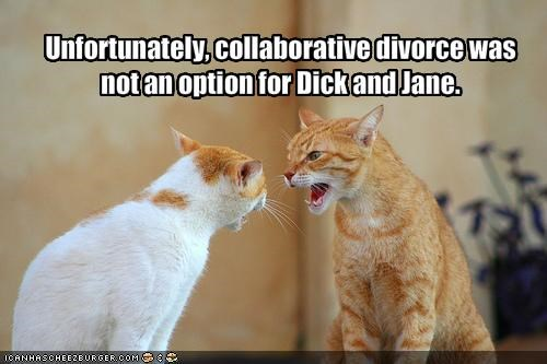 Unfortunately, collaborative divorce was not an option for d*ck and Jane.