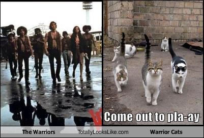 The Warriors Totally Looks Like Warrior Cats
