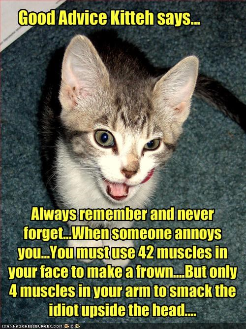 Always remember and never forget...When someone annoys you...You must use 42 muscles in your face to make a frown....But only 4 muscles in your arm to smack the idiot upside the head....