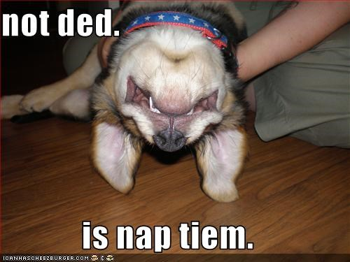 not ded.  is nap tiem.