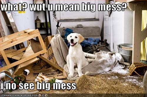 what? wut u mean big mess?  i no see big mess