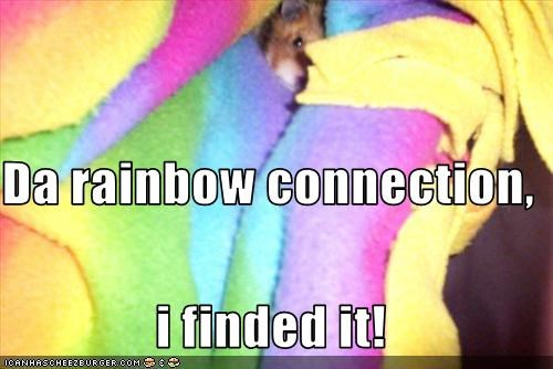Da rainbow connection,  i finded it!