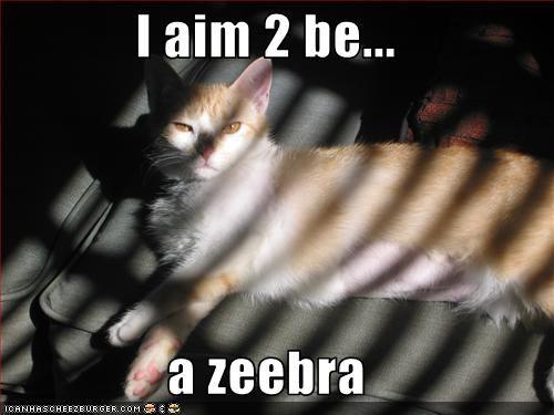 I aim 2 be...  a zeebra