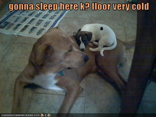 gonna sleep here k? floor very cold