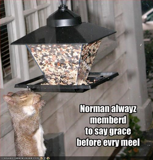 Norman alwayz memberd 