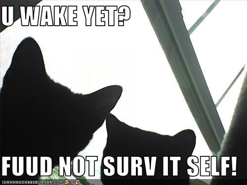 U WAKE YET?  FUUD NOT SURV IT SELF!