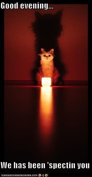 Good evening...  We has been 'spectin you