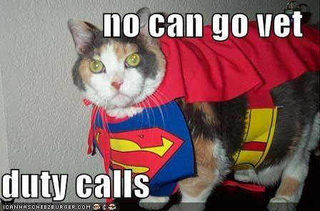 costume,excuses,lolcats,supercat,vet