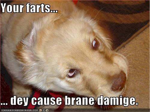 Your farts...  ... dey cause brane damige.