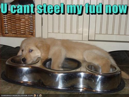 U cant steel my fud now