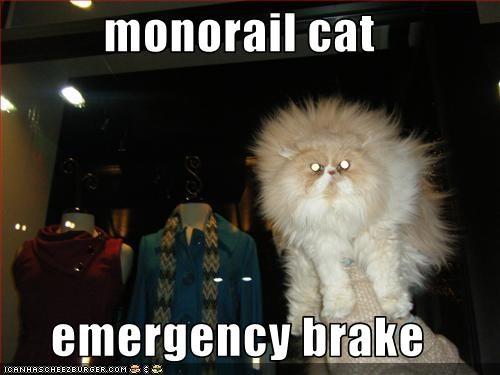 monorail cat  emergency brake