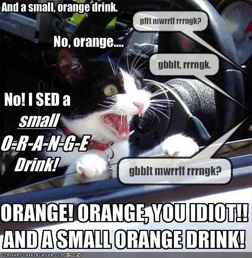 And a small, orange drink.