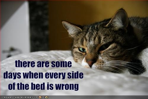 there are some 
